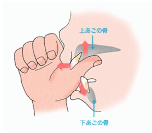 指しゃぶりを続けていると歯並びが悪くなります(オープンバイト・開咬) | アーブル歯科クリニック